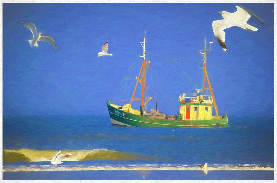 The Boat and Gulls