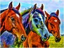 The Horses 2
