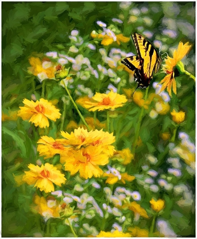 Yellow Flowers With Butterfly